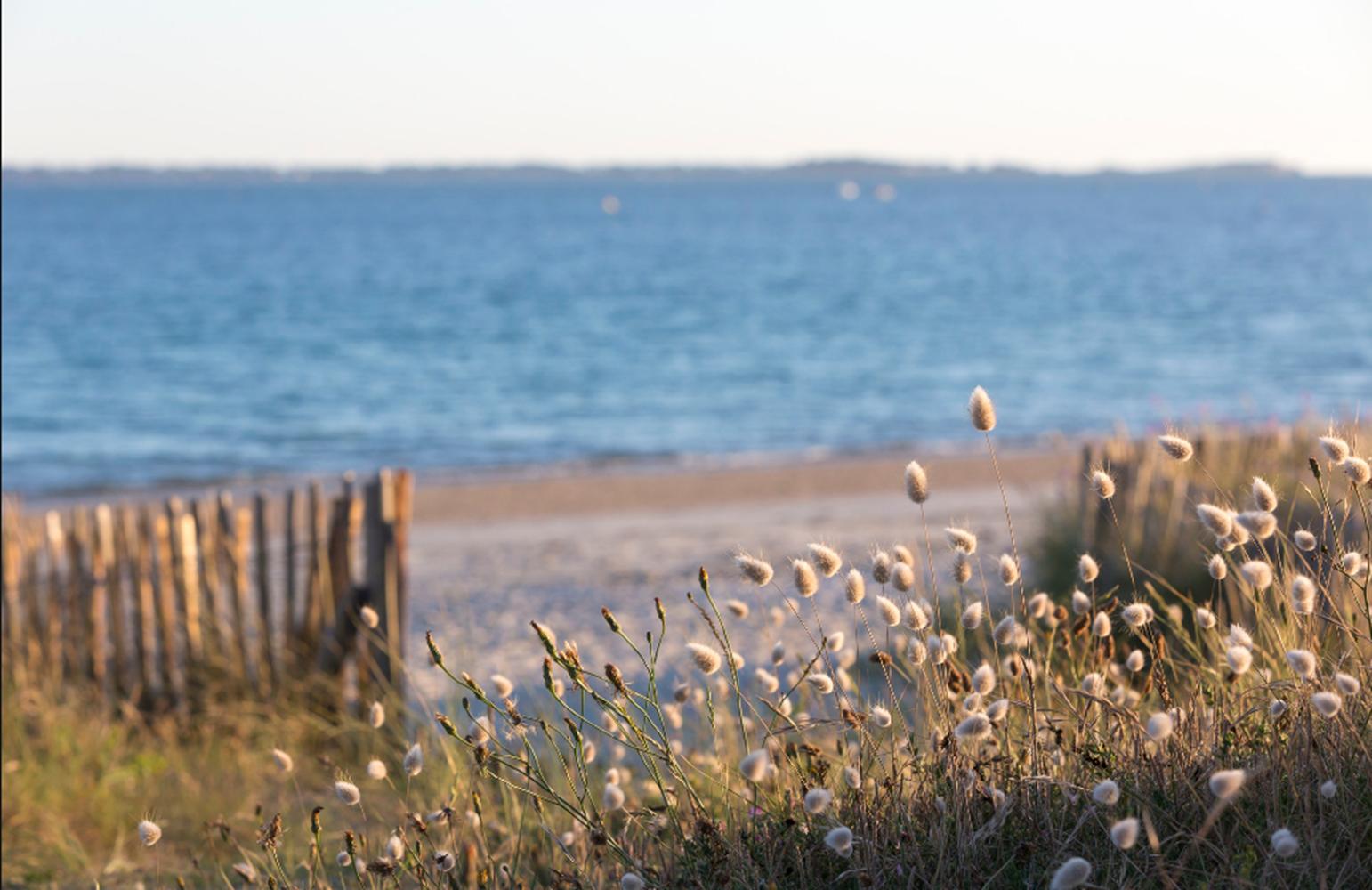 Grande plage de Carnac située à 50 mètres de l'hôtel ©