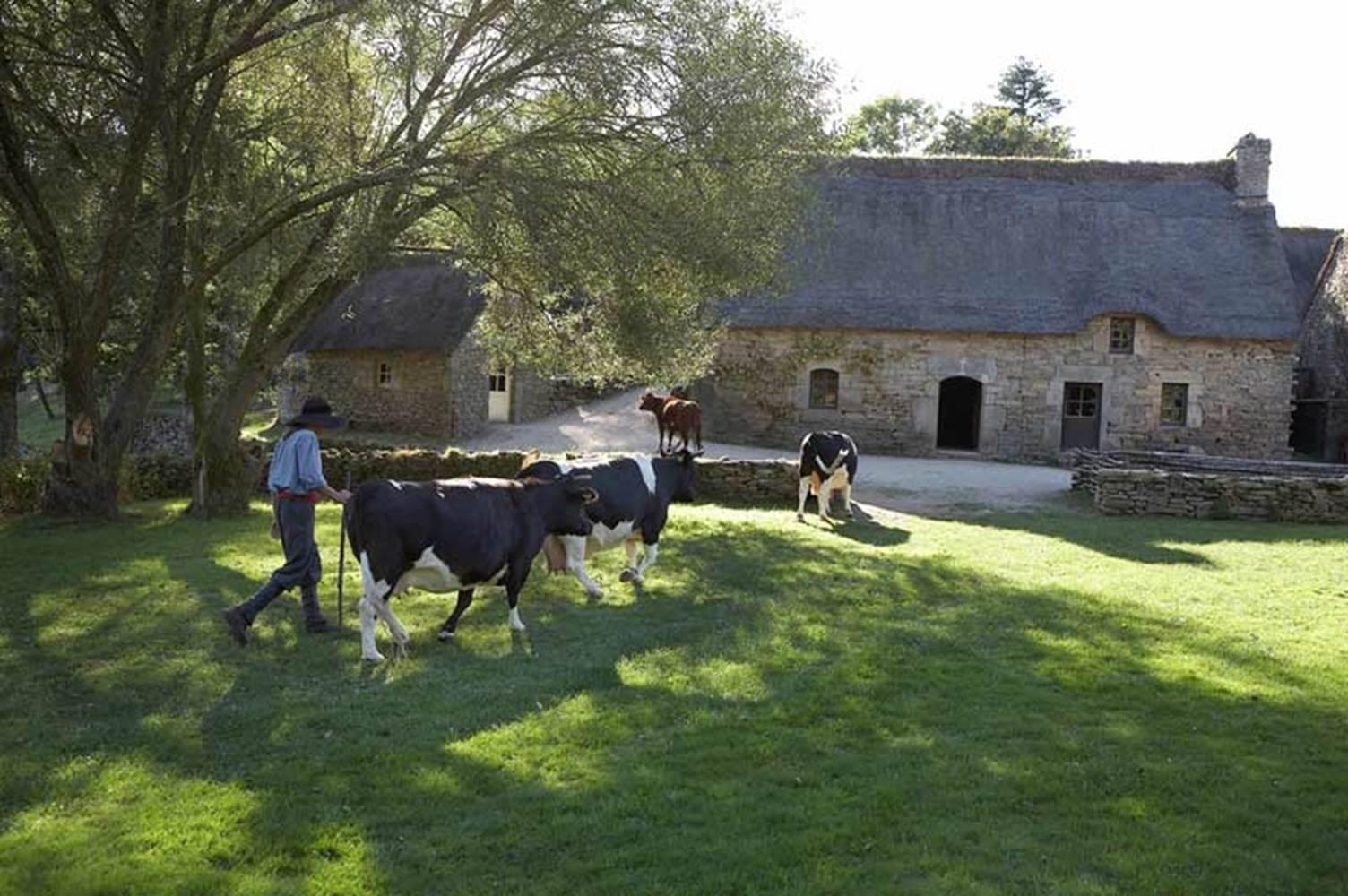 Poul Fetan - Quistinic - Morbihan Bretagne sud ©