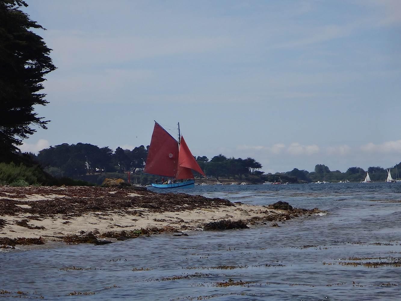 île de Stibiden dans le Golfe du Morbihan ©