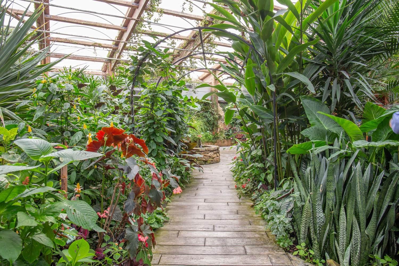 jardin-aux-papillons-morbihan-bretagne-sud-29 © © Magalie BARRE