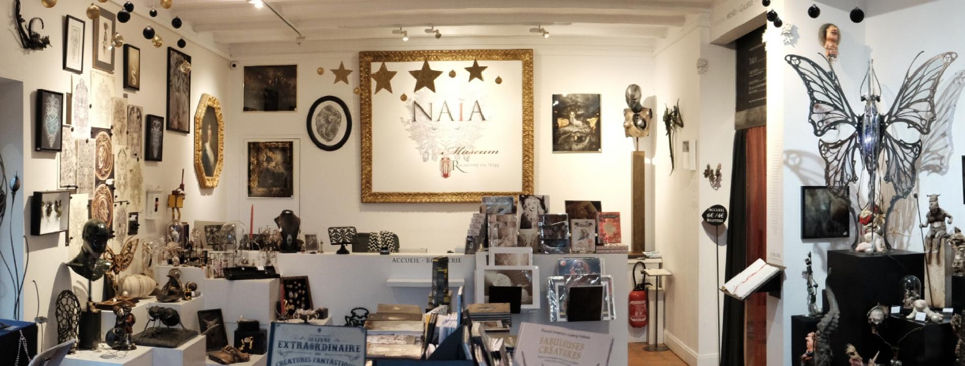 Naia Museum - Rochefort-en-Terre - Morbihan ©