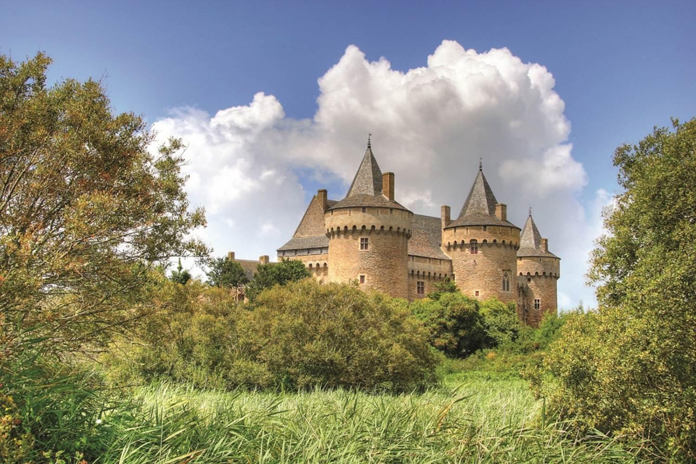 Domaine-de-Suscinio-Sarzeau-Presqu'île-de-Rhuys-Golfe-du-Morbihan-Bretagne sud ©