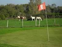 Golf et Gastronomie - Quiberon