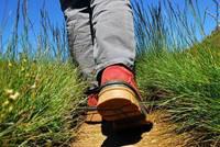 Les randonnées du lundi à Pluvigner - le 24 août