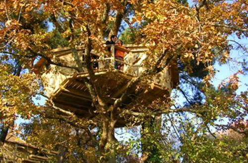 Nuit d'exception en cabanes perch�es dans les arbres