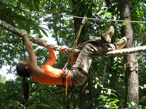 Monkey Forest - Aventures & Loisirs