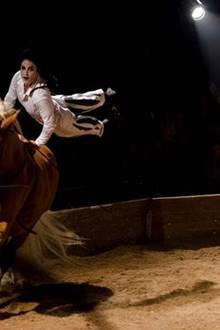 L'Été du Hangar Saboté : Festival de Spectacles Vivants et Equestres