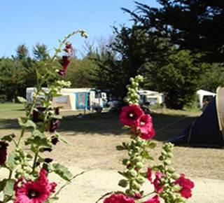 Camping Municipal Port Andro