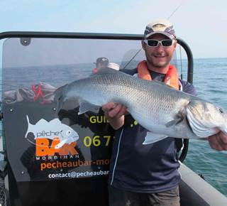 Pêche au Bar - Morbihan