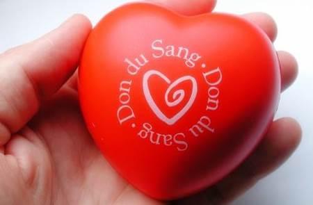 Don du Sang à Sarzeau