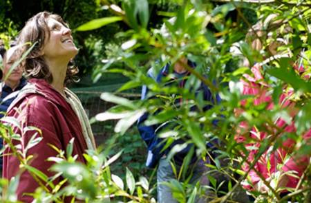 Balade découverte des arbres et plantes sauvages aux vertus nourricières et guérisseuses