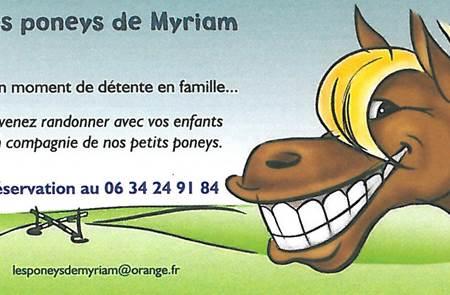 Les poneys de Myriam