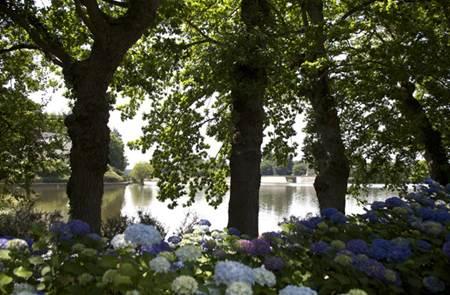L'Arboretum de l'Hortensia