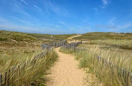 Balade nature :Découverte des dunes d'Erdeven