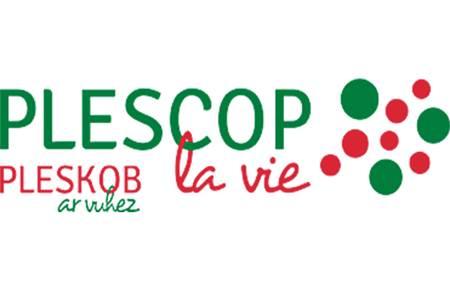 Les Transats à Plescop : musique & danses country